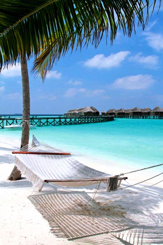 AIR TICKETS PROMOTION! Maldives, Male - Kyiv 26.12.2020 267 €